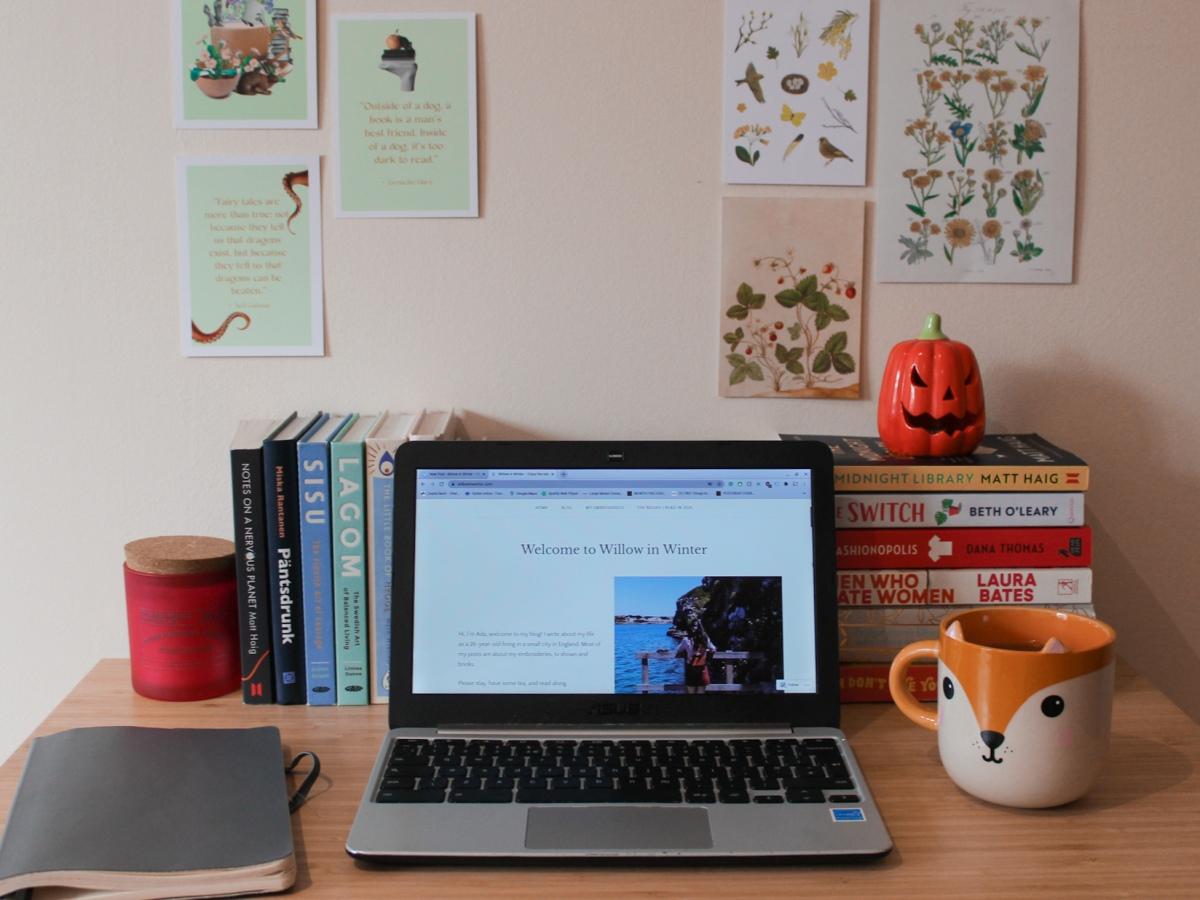 willow in winter desk